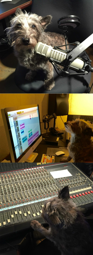 Coco in Studio2